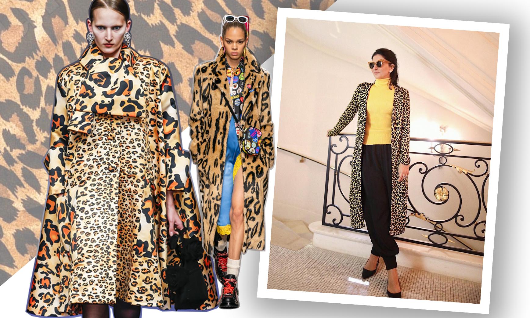 Tem Na Web - Trend hits: Animal Print